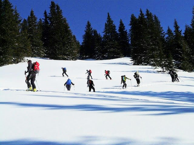 backcountry skiers on the skin track
